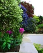 WLL-Rowdon-Road-planting-detail