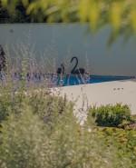 Wilson Lloyd Landscaping_Banstead_Surrey (3)