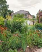 Wilson Lloyd Landscaping_Banstead_Surrey (18)